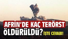Afrin'de Kaç Terörist Öldürüldü?  İşte Cevabı!