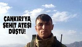 Çankırı'ya Şehit Ateşi Düştü!