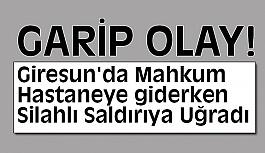 Giresun'da Mahkum Silahlı Saldırıya Uğradı