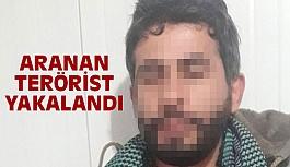Şanlıurfa'da, Aranan Terörist Yakalandı