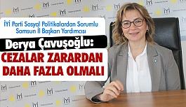 İyi Partili Çavuşoğlu; Kötü Alışkanlıklar, Suç ve Ceza
