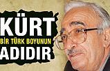 Ahmet Kabaklı; Kürt, Bir Türk boyunun adıdır