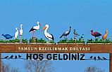 Samsun Büyükşehir Belediyesinden Kuş Cenneti Duyurusu