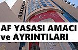 MHP'nin Af Yasası Teklifinde Amaç ve Ayrıntılar