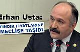 MHP'li Erhan Usta, Fındık Fiyatlarını Meclise Taşıdı
