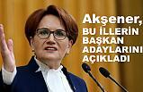 Akşener, Bu İllerin Belediye Başkan Adaylarını Açıkladı