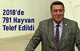 CHP Niğde Milletvekili Ömer Fethi Gürer: 2018'de 791 Hayvan Telef Edildi