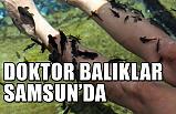 Mucize Doktor Balıklar Samsun'da