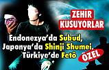 Endonezya'da Subud,  Japonya'da Shinji Shumei, Türkiye'de Fetö