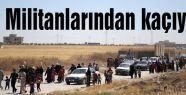 Aileler IŞİD Militanlarından kaçıyor...
