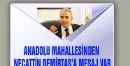 ANADOLU MAHALLESİNDEN NECATTİN DEMİRTAŞ'A MESAJ VAR