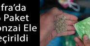Bafra'da Bonzai Ele Geçirildi