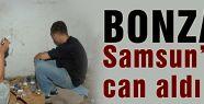 Bonzai can almaya devam ediyor