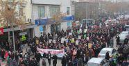 Erdoğan'a destek yürüyüşleri
