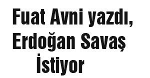 Fuat Avni yazdı, Erdoğan Savaş İstiyor