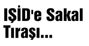 IŞİD'e Sakal Tıraşı...