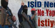 IŞİD Nedir ve Ne Yapmak İstiyor?