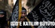 IŞİD'E KATILIM BÜYÜYOR