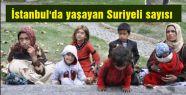 İstanbul'da kaç Suriyeli yaşıyor?