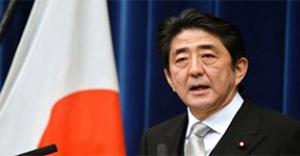 Japonya'da son ankette neler oldu?
