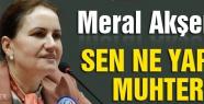 Meral Akşener: Sen ne yaptın muhterem!