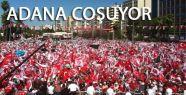 MHP, Adana Şu An Destan Yazıyor