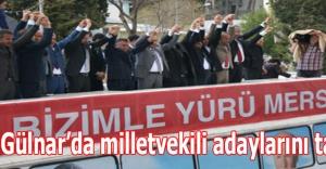 MHP Gülnar'da milletvekili adaylarını tanıttı