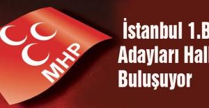 MHP İstanbul 1.Bölge Adayları Halkla Buluşuyor