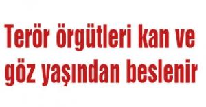 MHP'li Karadağ:Terör örgütleri kan ve göz yaşından beslenir
