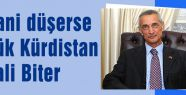 MHP'li Alan, Kobani düşerse Büyük Kürdistan Hayali Biter