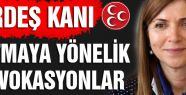 MHP'li Topçu: provakasyona Dikkat Çekti!