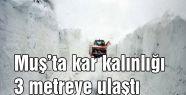 Muş'ta kar kalınlığı 3 metre...