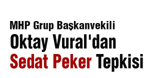 Oktay Vural'dan Sedat Peker Tepkisi