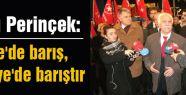 Perinçek; Türkiyenin Başındaki Bela...