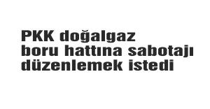 PKK doğalgaz boru hattına saldırı önlendi