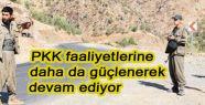 PKK faaliyetlerine devam ediyor