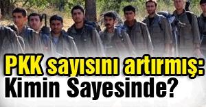 PKK sayısını artırmış: Kimin sayesinde?