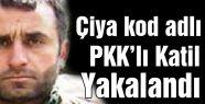 PKK'lı Asker Katili Lokman Kakamele yakalandı
