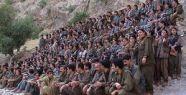 PKKnın Asıl 1 Numarası