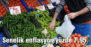 Senelik enflasyon yüzde 7,95