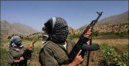Şırnak'ta 3 Kişi Kaçırıldı