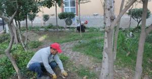 Turgutlu'da Camii'lere Hizmet