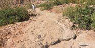 Türkiye'de kuraklık tehlikesi...