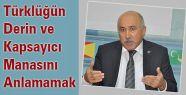 Türklüğün Manasını Anlamamak