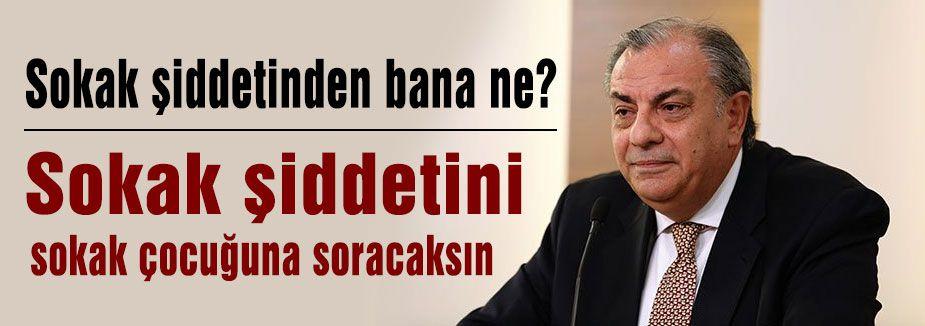 Tuğrul Türkeş; Sokak şiddetinden bana ne?