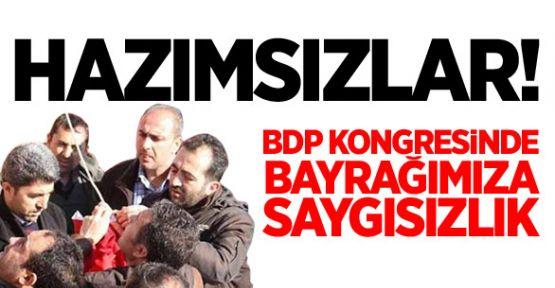 Türk Bayrağını Hazmedemediler...
