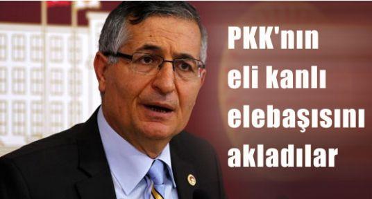 Türk'e Saldırmak Yükselen Değer Haline Geldi