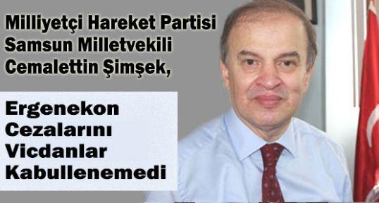 MHP'li Şimşek; Türkiye Ergenekon davasında Yara Almıştır