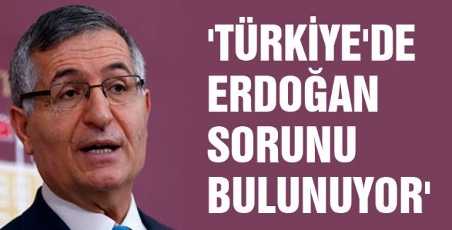 'TÜRKİYE'DE ERDOĞAN SORUNU BULUNUYOR'
