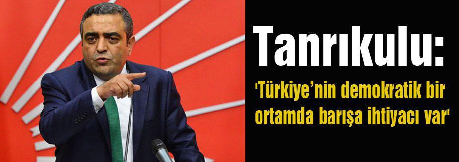 'Türkiye'nin demokratik bir ortamda barışa ihtiyacı var'
